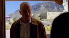 Walt visits Hank.